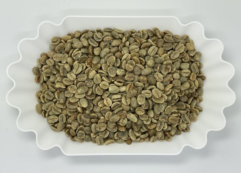 Natural Arabica Uganda Chanjojo AAA Gr.1 Limited Edition